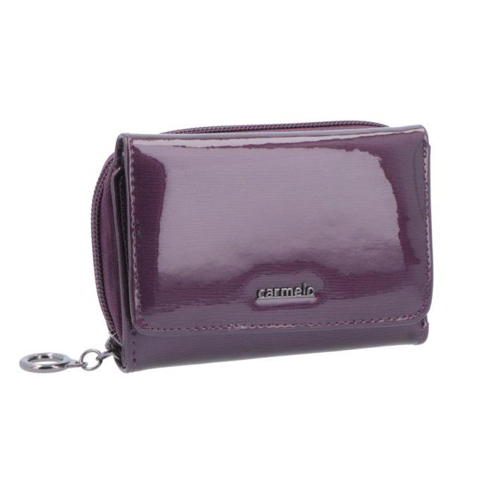 Kožená peněženka Carmelo – 2105 G F