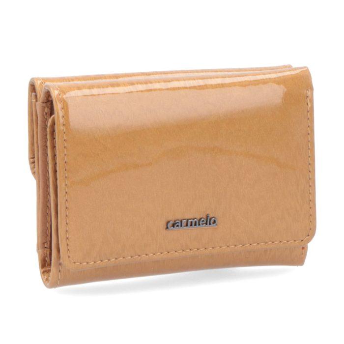 Kožená peněženka Carmelo – 2106 H ZL