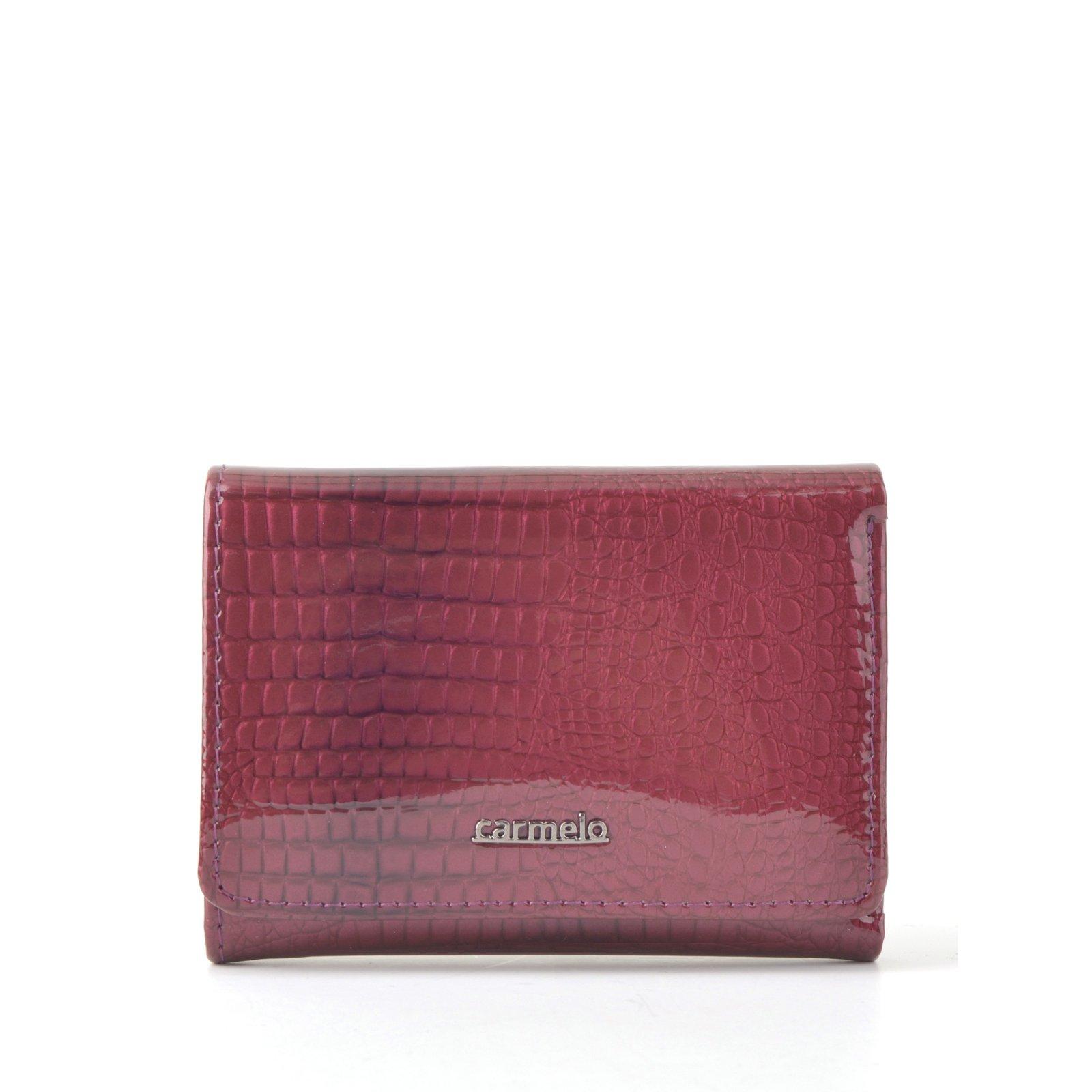 Kožená peněženka Carmelo – 2106 A LI