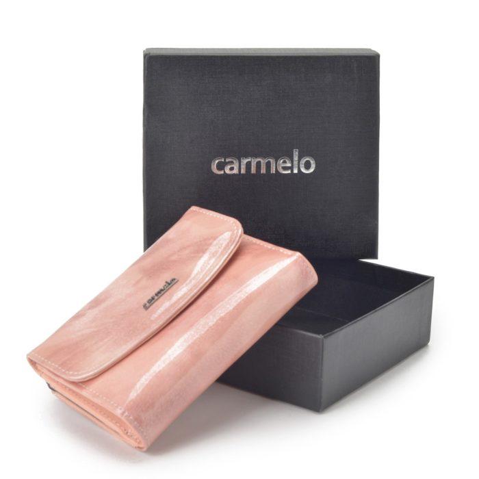 Kožená peněženka Carmelo – 2117 P R